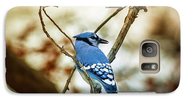 Bluejay Galaxy S7 Case - Blue Jay by Robert Frederick