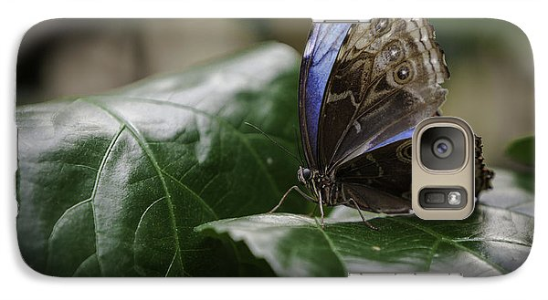 Galaxy Case featuring the photograph Blue Morpho On A Leaf by Jason Moynihan