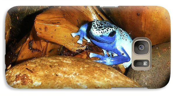 Galaxy Case featuring the photograph Blue Poison Dart Frog by Anthony Jones