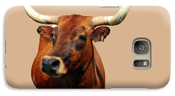 Galaxy Case featuring the photograph Blue Ribbon Pose by Betty Northcutt