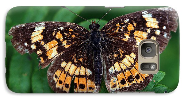 Galaxy Case featuring the photograph Blue Ridge Butterfly by Kay Lovingood