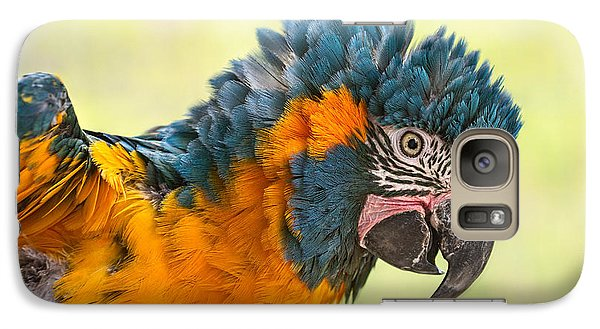Blue Throated Macaw Galaxy S7 Case