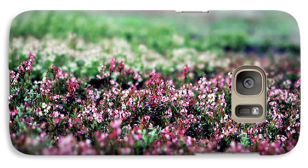 Galaxy Case featuring the photograph Blueberry Blossoms  by Alana Ranney