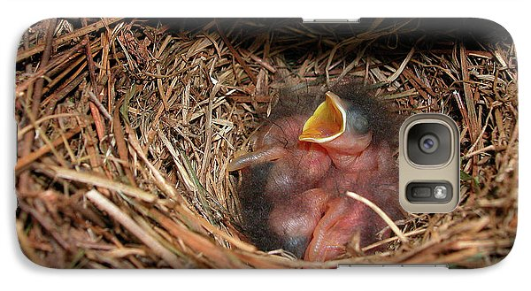 Galaxy Case featuring the photograph Bluebird Babies by Marie Hicks