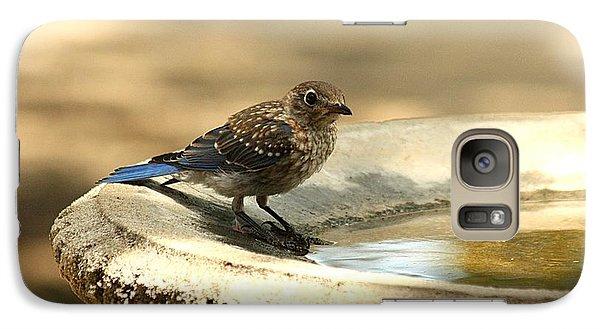 Galaxy Case featuring the photograph Bluebird Bath Time by Sheila Brown