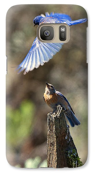 Bluebird Buzz Galaxy Case by Mike Dawson