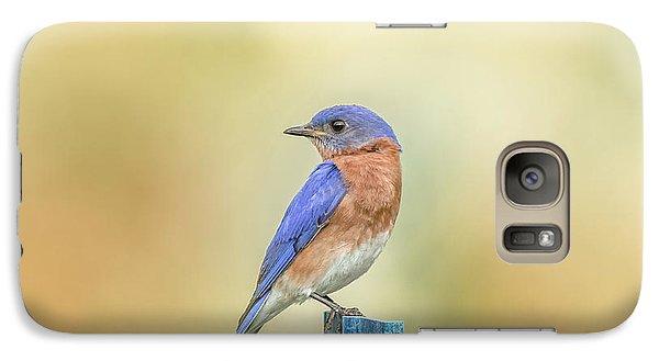 Galaxy Case featuring the photograph Bluebird On Blue Stick by Robert Frederick