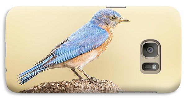 Galaxy Case featuring the photograph Bluebird On Fence Post by Robert Frederick