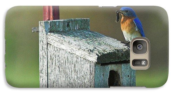 Galaxy Case featuring the photograph Bluebird by Steve Stuller