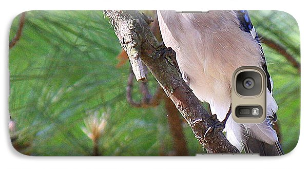 Galaxy Case featuring the photograph Bluejay by Roena King