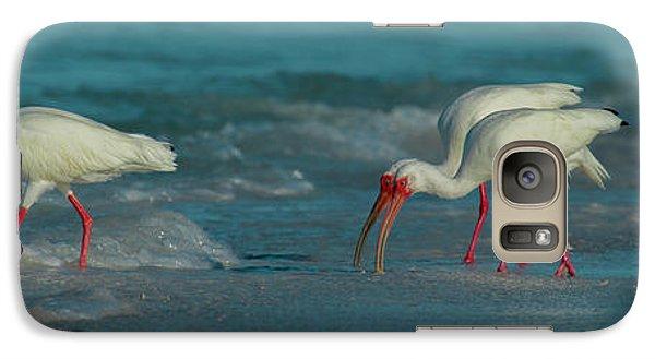 Ibis Galaxy S7 Case - Blues Trio Cortez Beach by Betsy Knapp