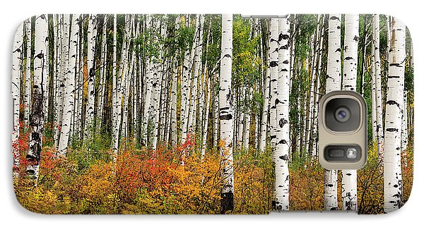 Galaxy Case featuring the photograph Bold And Magnificent Autumn by Tim Reaves