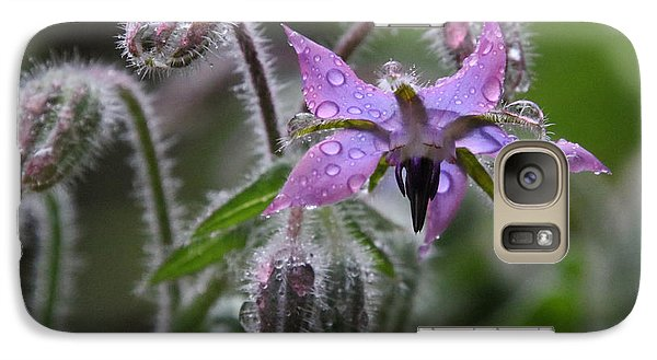 Borage Umbrella Galaxy S7 Case