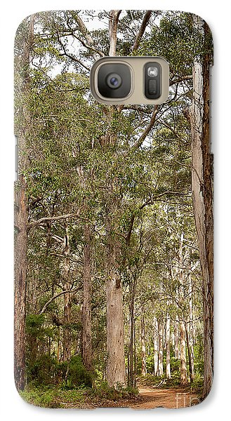 Galaxy Case featuring the photograph Boranup Drive Karri Trees by Ivy Ho