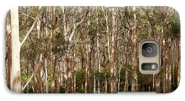 Galaxy Case featuring the photograph Boranup Forest  by Ivy Ho