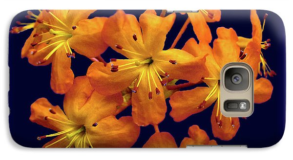 Galaxy Case featuring the digital art Bouquet In A Box by Donna Brown