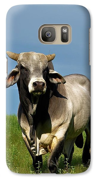 Galaxy Case featuring the photograph Brahman Boss by Jan Amiss Photography