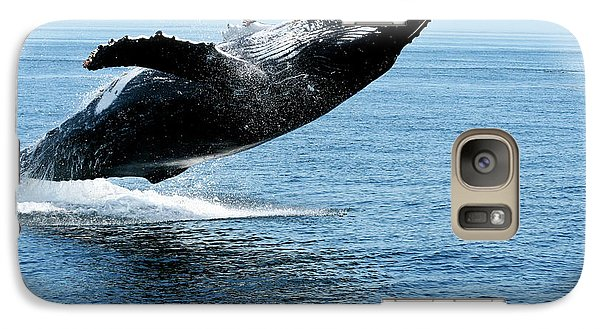 Breaching Humpback Whales Happy-2 Galaxy S7 Case