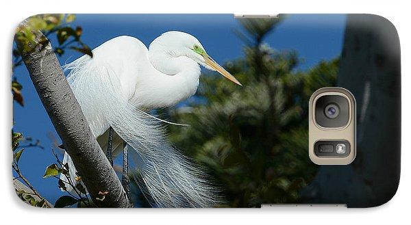Galaxy Case featuring the photograph Breeding Beauty by Fraida Gutovich