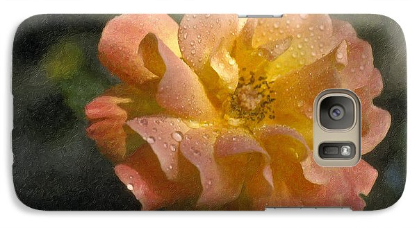 Galaxy Case featuring the photograph Bridal Pink Yellow Hybrid Tea Rose Genus Rosa by David Zanzinger
