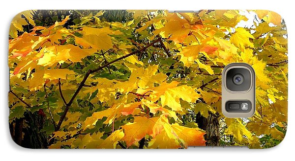 Galaxy Case featuring the photograph Brilliant Maple Leaves by Will Borden