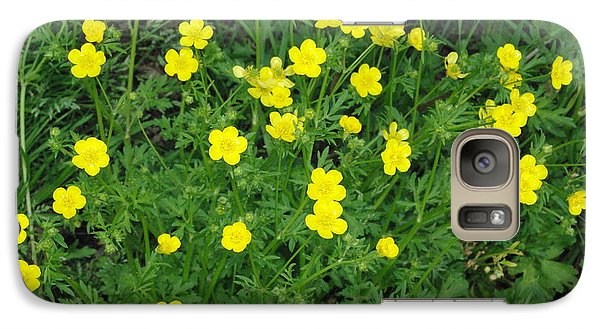 Galaxy Case featuring the photograph Bristly Buttercup by Robyn Stacey