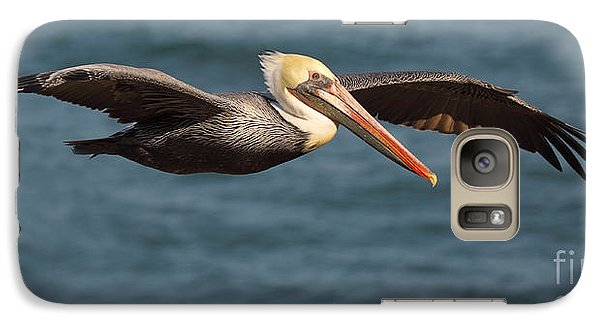 Galaxy Case featuring the photograph Brown Pelican Flying By by Max Allen