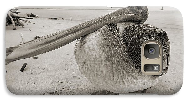 Pelican Galaxy S7 Case - Brown Pelican Folly Beach Morris Island Lighthouse Close Up by Dustin K Ryan