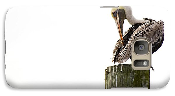 Galaxy Case featuring the photograph Brown Pelican On Piling by Bob Decker
