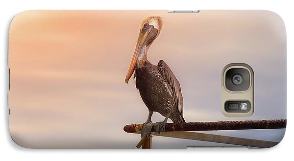 Galaxy Case featuring the photograph Brown Pelican Sunset by Robert Frederick