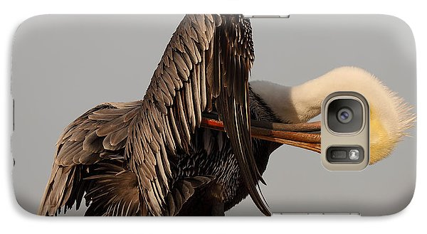 Galaxy Case featuring the photograph Brown Pelican With An Acrobatic Lean And Preen by Max Allen