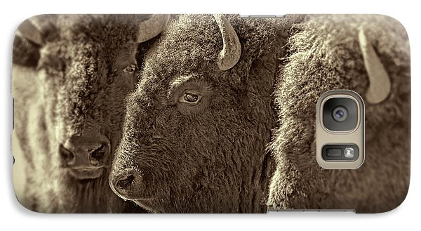 Galaxy Case featuring the photograph Trio American Bison Sepia Brown by Jennie Marie Schell