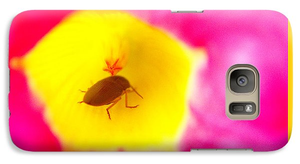 Galaxy Case featuring the photograph Bug In Pink And Yellow Flower  by Ben and Raisa Gertsberg