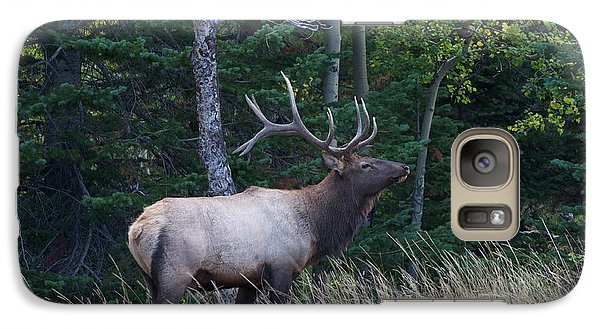Galaxy Case featuring the photograph Bull Elk 2 by Aaron Spong