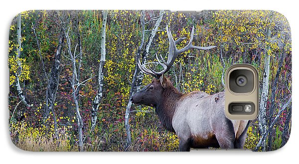 Galaxy Case featuring the photograph Bull Elk by Aaron Spong