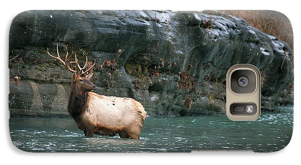 Galaxy Case featuring the photograph Bull Elk Crossing The Buffalo River by Michael Dougherty