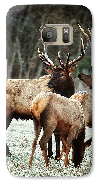 Galaxy Case featuring the photograph Bull Elk With Cows In The Late Rut by Michael Dougherty