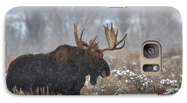 Galaxy Case featuring the photograph Bull Moose In The Fog by Adam Jewell