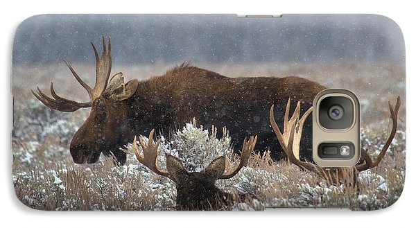 Galaxy Case featuring the photograph Bull Moose In The Snowy Meadow by Adam Jewell