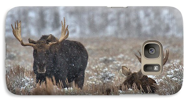 Galaxy Case featuring the photograph Bull Moose Winter Wandering by Adam Jewell