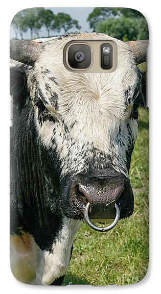 Galaxy Case featuring the photograph Bull With Snout Ring by Patricia Hofmeester