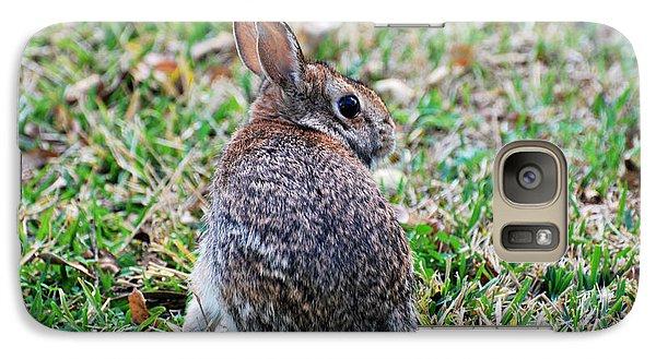 Galaxy Case featuring the photograph Bunny by Teresa Blanton