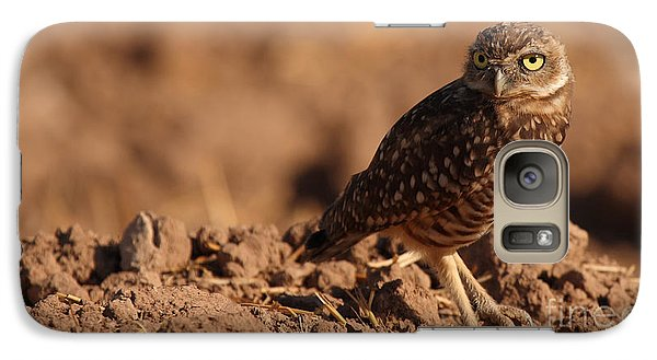Galaxy Case featuring the photograph Burrowing Owl Looking Back Over Shoulder by Max Allen