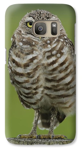 Burrowing Owl Lookout Galaxy S7 Case