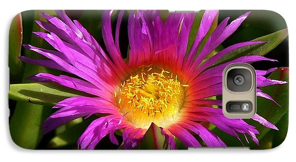Galaxy Case featuring the photograph Burst Of Beauty by Debbie Karnes