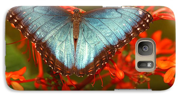 Galaxy Case featuring the photograph Butterfly Among The Flowers by Max Allen