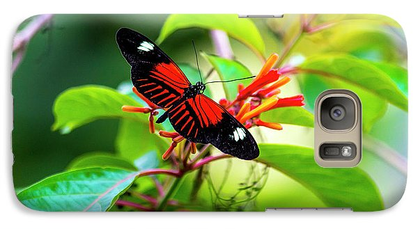 Galaxy Case featuring the photograph Butterfly  by David Morefield