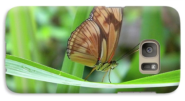 Galaxy Case featuring the photograph Butterfly by Manuela Constantin