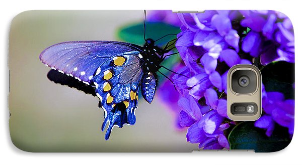Galaxy Case featuring the photograph Butterfly On Mountain Laurel by Debbie Karnes