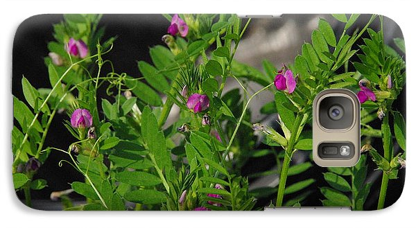 Galaxy Case featuring the photograph Butterfly Pea by Robyn Stacey